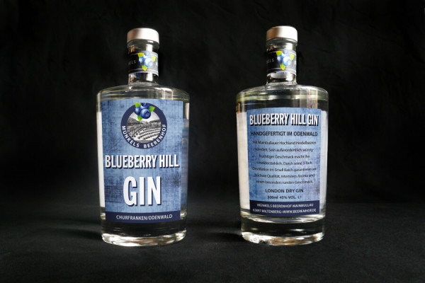 Blueberry Hill Gin 0,5l
